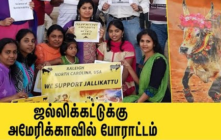 American Tamils protest against Jallikattu ban