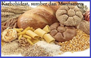 karbohidrat, sumber karbohidrat, fungsi karbohidrat
