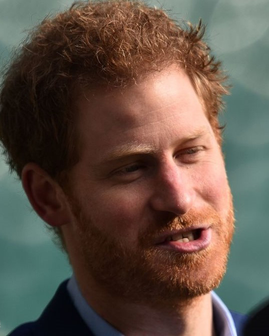 Royal Family Around The World: Prince Harry, Patron Of The
