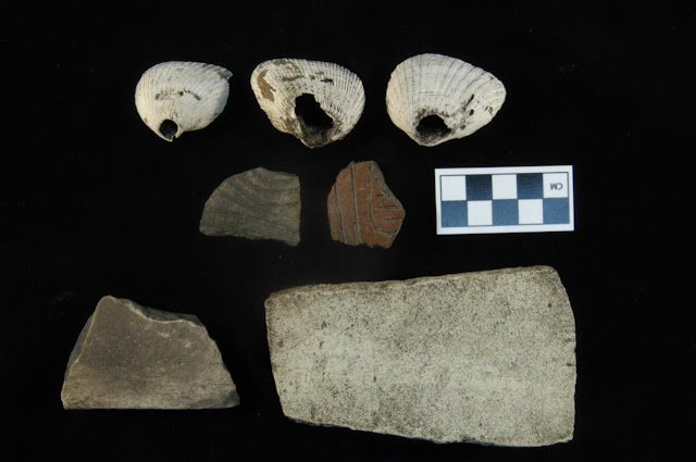 House of ancient Native American ruler rediscovered in Florida