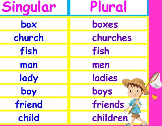 Lesson Plan Of Plurals English Grade 3 | Effective and ...