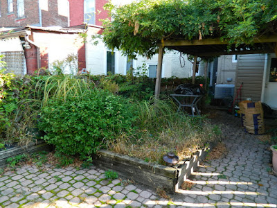 Palmerston Little Italy Toronto Back Yard Garden Cleanup before by Paul Jung Gardening Services