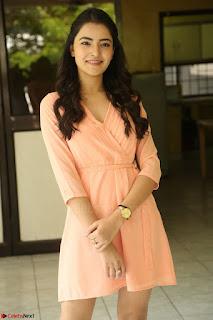 Rukshar Mir in a Peachy Deep Neck Short Dress 132.JPG