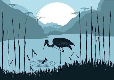 natural-scene-stork-birds
