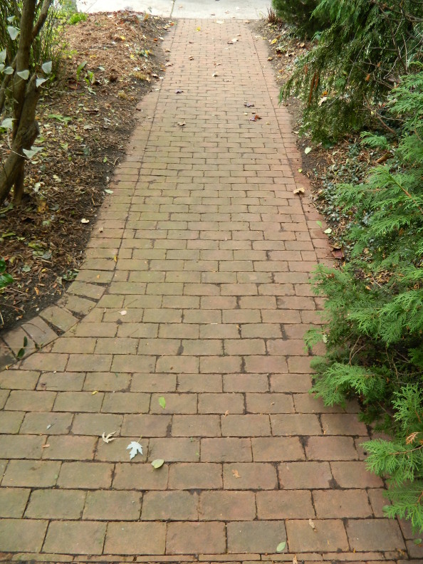 Kgk Gardening Landscape: Garden Muses: Not Another Toronto Gardening Blog : Fall