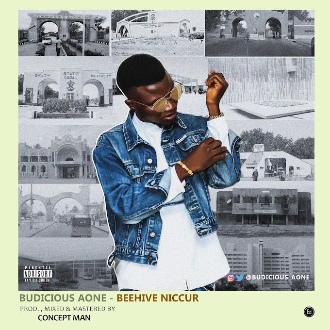 Budicious Aone - Beehive Niccur