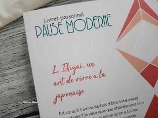 Bulles de Plume - Box Pause Moderne Février 2019 - La Minutieuse