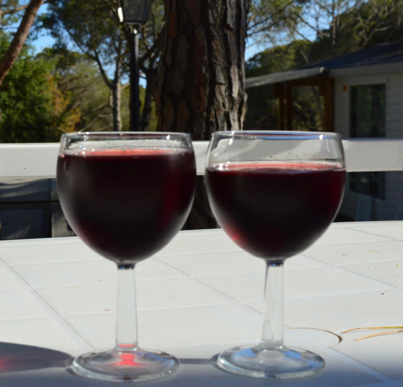 Camping La Siesta, Calella de Palafrugell, Costa Brava - a review