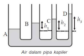 Air dalam Pipa Kapiler