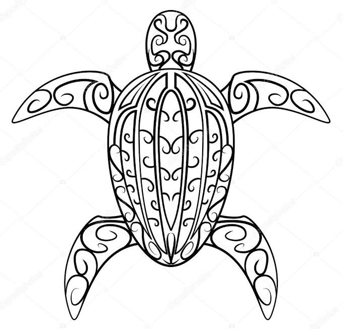 Kaplumbağa Sembolünün Anlamı