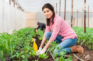 Agriculture Business Ideas that can make you Rich