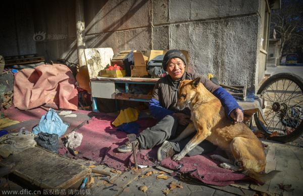 Cảm động chú chó đẩy xe lăn đưa chủ nhân tàn tật đi làm hàng ngày