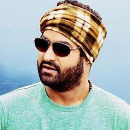 Jr Ntr Next Movie Updates And News