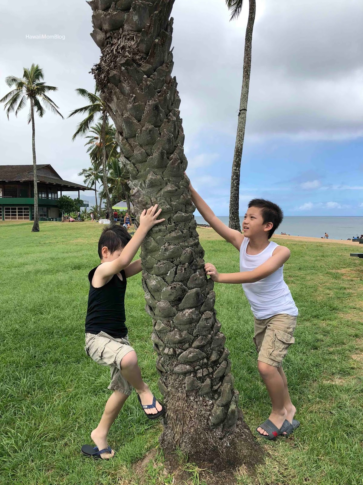 Hawaii Mom Blog: UNIQLO AIRism Review and Giveaway