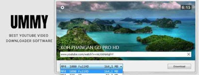 Best Youtube Video Downloader Software For Pc