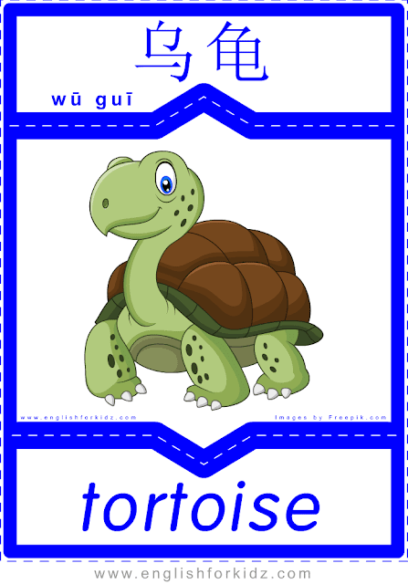 Tortoise - printable English-Chinese flashcards - pets