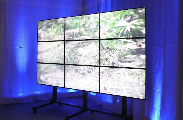 http://www.audiovisualrenting.com/gear/videowall-rentals/