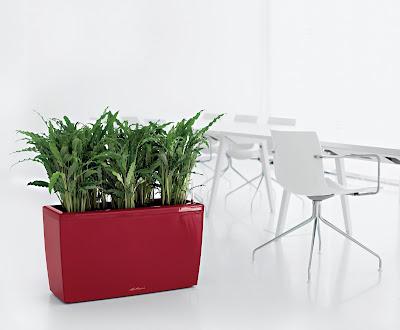 озеленение офисов, умные кашпо, комплексное обслуживание за декоративными растениями