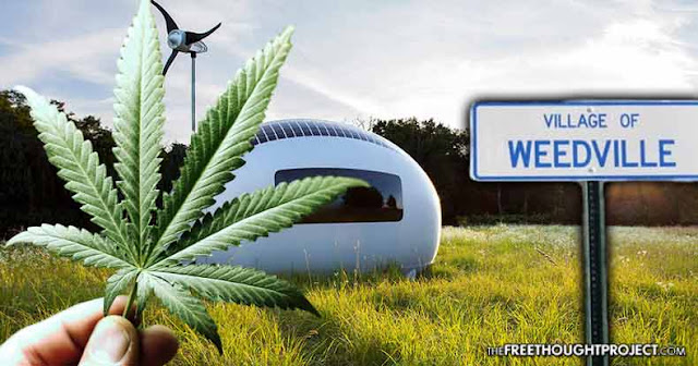 Welcome to Weedville: Pot Grower Buys Entire US Town to Create 'Cannabis-Friendly' Off-Grid City  Weedville