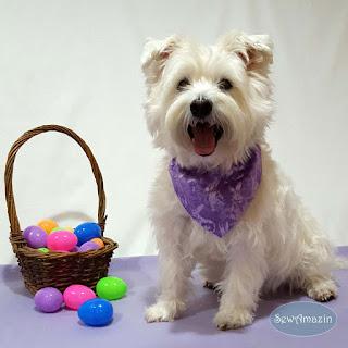 Purple Easter Bunny Spring Dog Bandana, violet, amethyst, lilac
