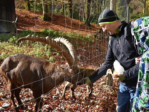 Podzimní prázdniny 2017 v Rakousku