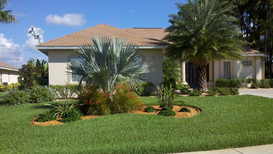 Zimmerman tree service landscaping in south florida for Garden design with palms