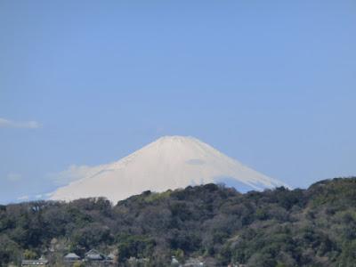 安国論寺からの富士