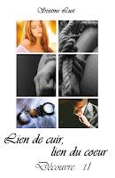 http://leslecturesdeladiablotine.blogspot.fr/2017/10/lien-de-cuir-lien-du-coeur-decouvre.html