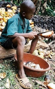 Foto de niño trabajando bajo el sol