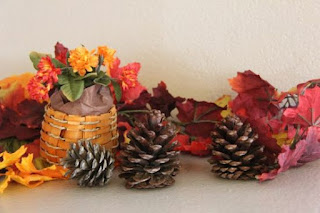 Scented Pine Cone Display