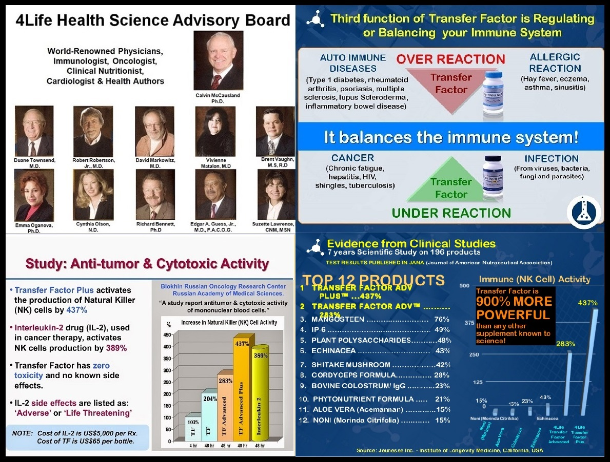 zinc monometionina y diabetes