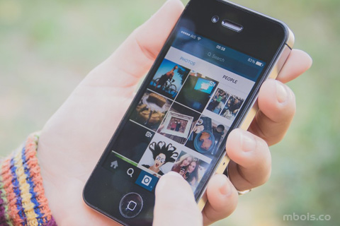 Download Video/Gambar Instagram Lewat Telegram