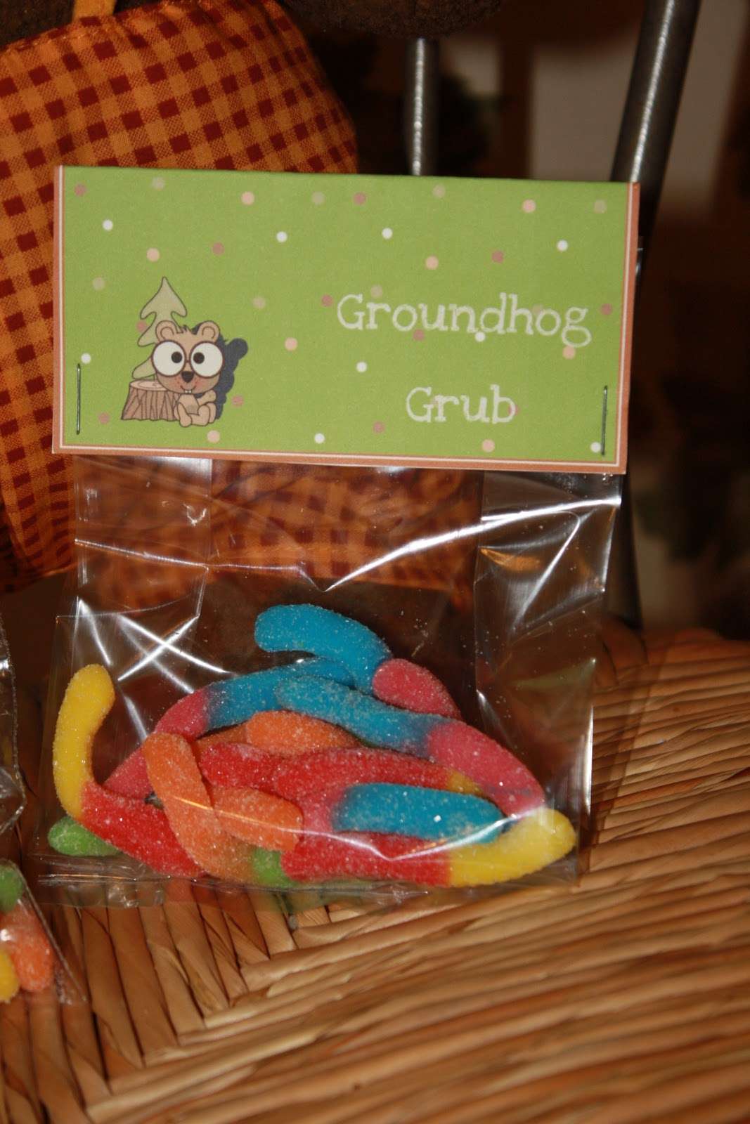 Trendz And Traditions: Groundhog Day
