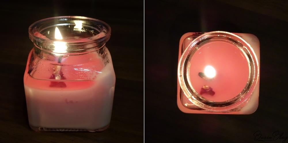Futura Natura naturalna świeca sojowa Dzika Róża