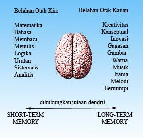 otak kanan kiri manusia