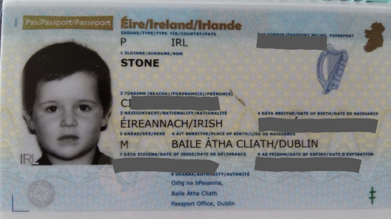 Cherrysue doin the do how to get babys first passport in cherrysue doin the do how to get babys first passport in ireland the definitive guide falaconquin