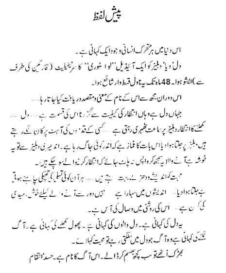 Dil Diya Dehleez Novel