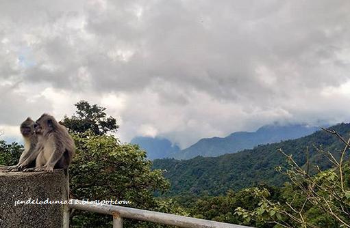 Taman Pusuk Sembalun, Panorama Alam Indonesia Dari Lombok Timur