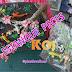 ¡ESTANQUE DE PECES KOI! hecho en PLASTILINA
