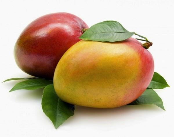 gambar+buah+mangga