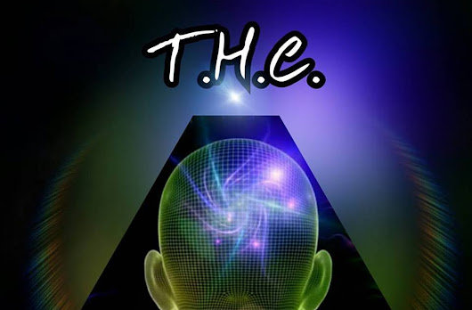 """Tribe Of Higher Consciousness"" AKA T.H.C. ...Be Apart Of The Movement..."