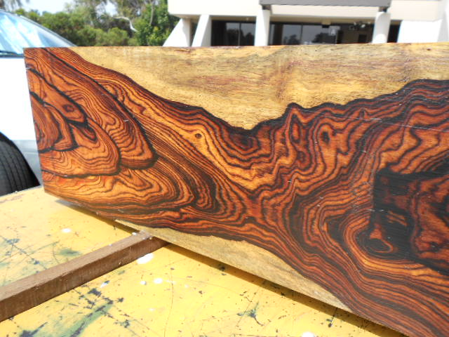 Tropical Exotic Hardwoods Highly Figured Cocobolo Squared