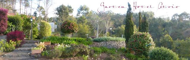 Garten vom Hotel Atrio auf Madeira