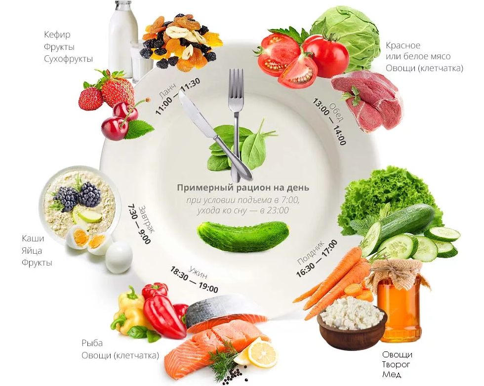 Правильное питание пример диет