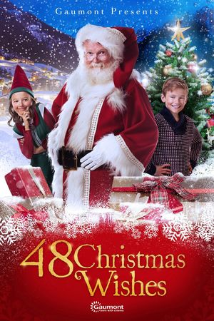 Poster 48 Christmas Wishes 2017