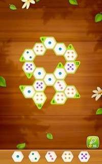 Number Puzzle Hexa APK