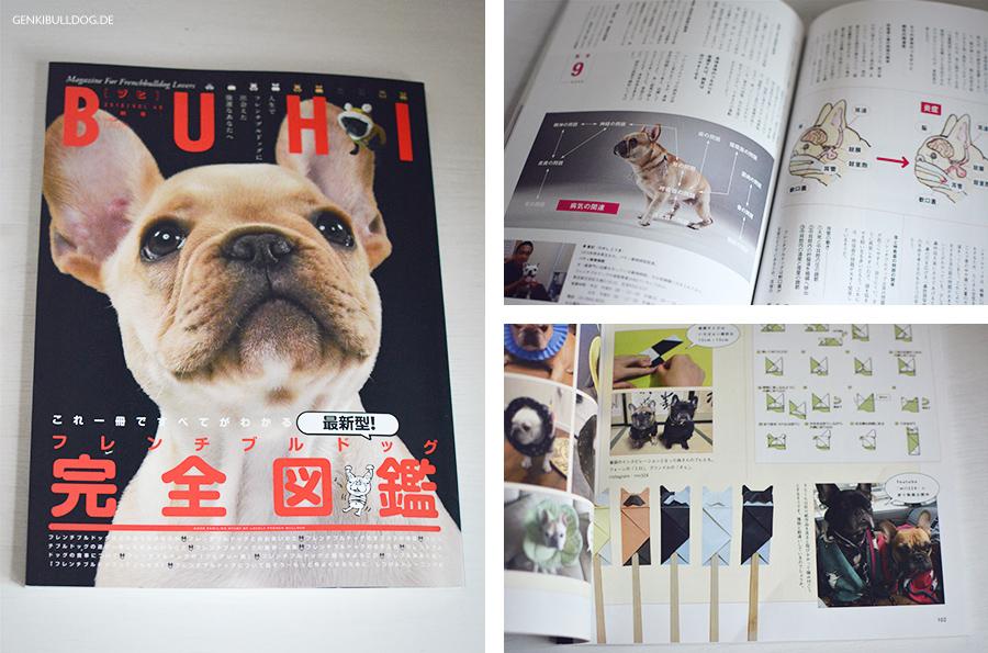 BUHI Französische Bulldoggen Zeitschrift