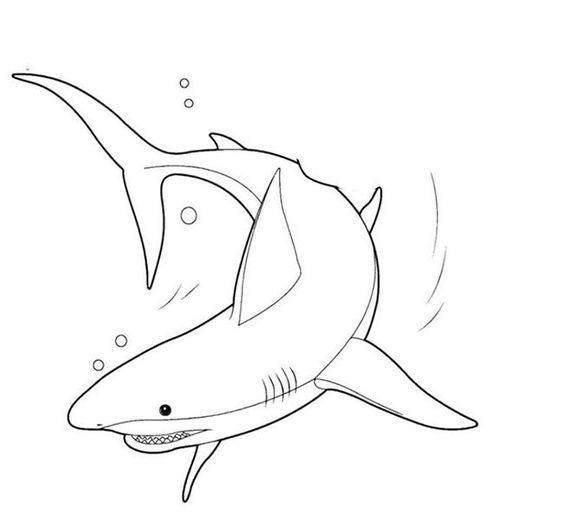 Tranh tô màu con cá mập đang bơi