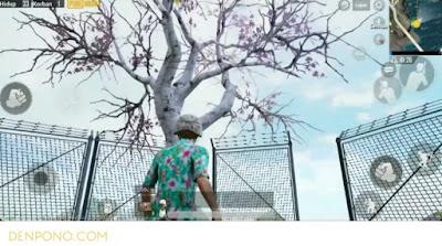 Inilah Lokasi Pohon Sakura di PUBG Mobile