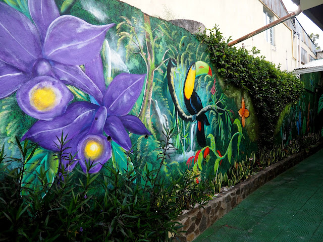 Jungle street art in Monteverde, Costa Rica
